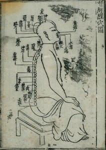 L0037827 Acupuncture chart, dumai (Governor Vessel), Chinese Credit: Wellcome Library, London. Wellcome Images images@wellcome.ac.uk http://wellcomeimages.org Woodcut illustration from an edition of 1537 (16th year of the Jiajing reign period of Ming dynasty).  The Governor Vessel (dumai) is a channel originating in the lower back. It has 27 acu-moxa locations, all of which are clearly marked. See 'Lettering' for full list of point names. Woodcut engraving Library of Zhongguo zhongyi yanjiu yuan (China Academy of Traditional Chinese Medicine) Zhenjiu juying (Collected Gems of Acupuncture and Moxibustion) Gao Wu (Ming period, 1368-1644) Published: 1537 Copyrighted work available under Creative Commons Attribution only licence CC BY 4.0 http://creativecommons.org/licenses/by/4.0/