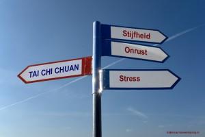 Tai Chi Signpost Tai Chi Peter de Jong